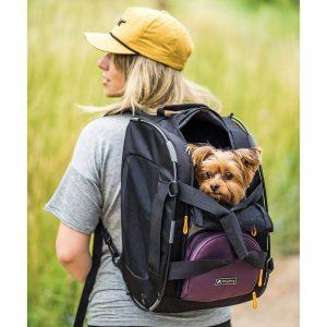 Ollydog ryggsäck
