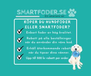 Smartfoder